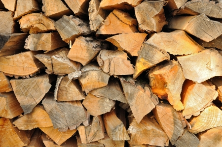 Stack of chopped firewoods prepared for winter Stock Photo - 23000577
