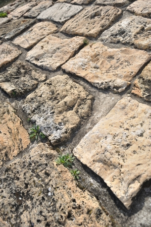Stone pavement in detail and in perspective Stock Photo