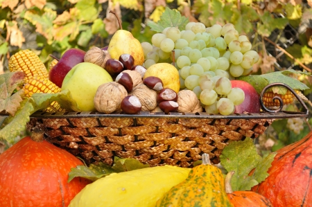 Colorful autumn fruits and vegetables decorative composed in dish
