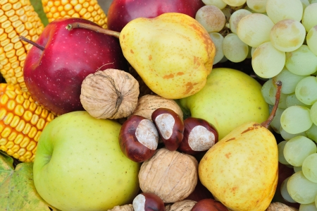 Detail of colorful autumn fruits and vegetables for natural background photo