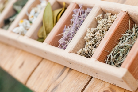 Assortment of dry medicinal herbs in wooden box