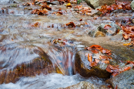 Autumn creek with rocks and foliage in mountain Stock Photo