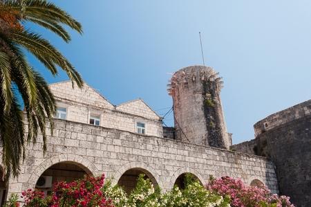 Buildings, palm tree and flowers in Korcula in Croatia Editorial