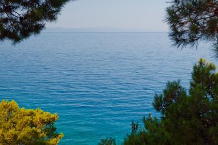 Adriatic sea framed by tree near Podgora in Croatia. Natural background