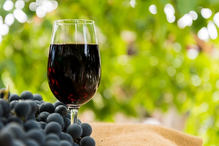 Red wine glass and bunch of grapes outdoor against blurred green natural background. Space in right side.