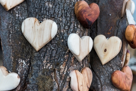 Some wooden heart shapes on tree trunk