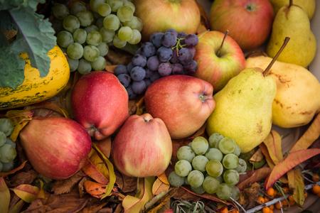 Heap of fresh, colorful autumn fruits - apple, pear, grape Stock Photo