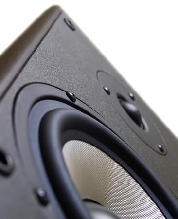 Stereo speaker woofer