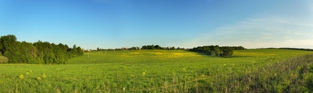 Wide panorama view with blue sky and green meadow