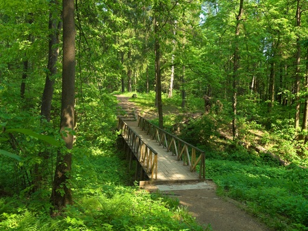 Small wooden bridge in the park on sunny summer day photo