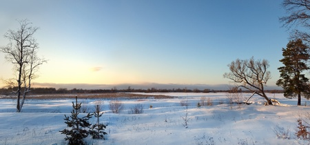 Panorama view of snow winter field on sunset with blue sky
