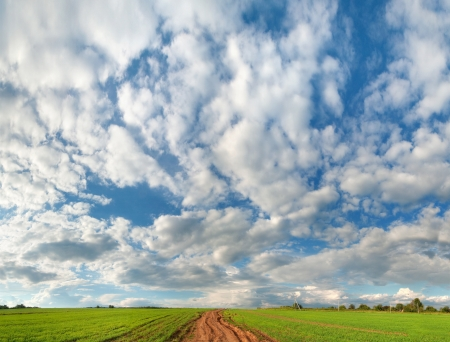 Green meadow under high blue sky with clouds Stock Photo