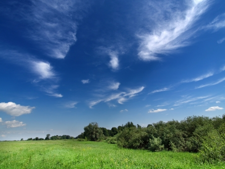 Deep blue summer sky and green meadow with trees Stock Photo