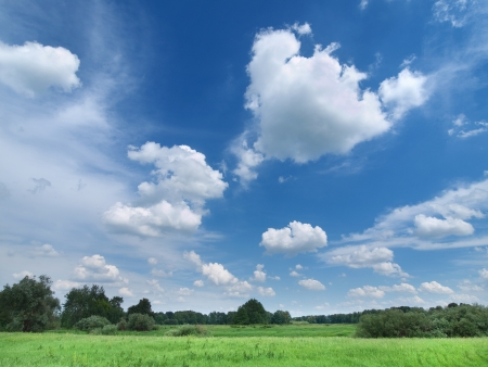 Green summer meadow under deep blue sky with clouds
