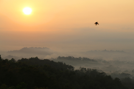 Sunrise view of Borobudur temple in the background. Misty rainforest in Java, Indonesia, Southeast Asia. Stock Photo