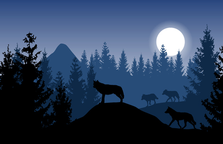 Paesaggio di vettore blu con un branco di lupi nella fitta foresta con la luna incandescente.