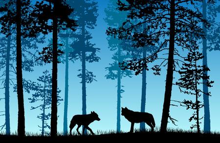 Paesaggio di vettore di due lupi in una foresta con sfondo blu nebbioso.
