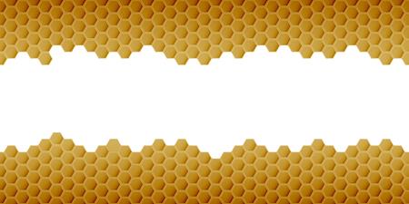 Hexagonal realistic honeycomb seamless texture on white background.