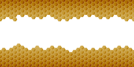 Hexagonal realistic honeycomb seamless texture on white background.