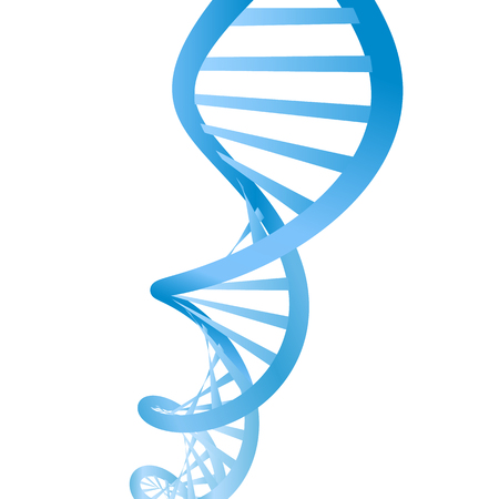 Beautiful realistic DNA blue colored double helix on white background.