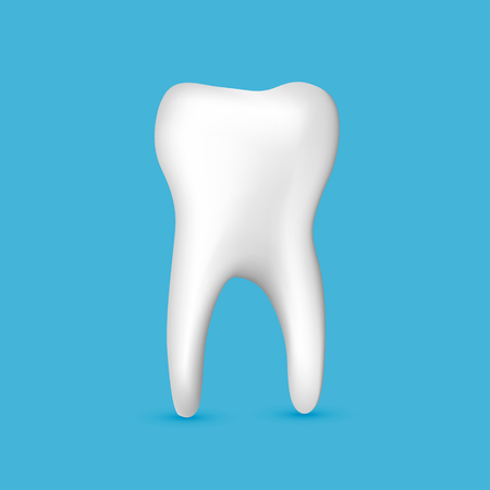 Beautiful realistic white tooth dentist vector on blue background.