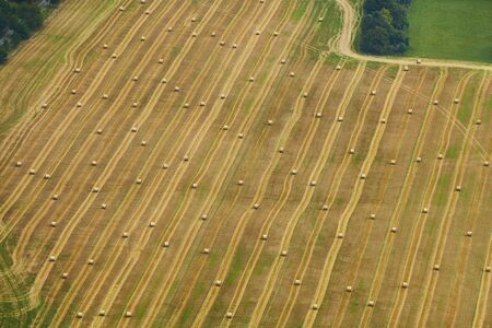 Aerial view of golden field with hay bales surrounded by trees and green grass