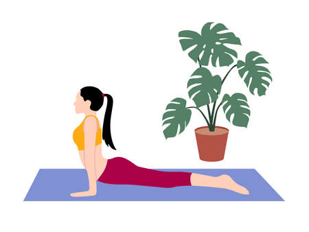 Beautiful simple flat vector of a young slim woman exercising yoga. Cobra pose.