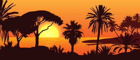 Beautiful vector landscape with palm tree silhouettes on an island during sunset. Illustration