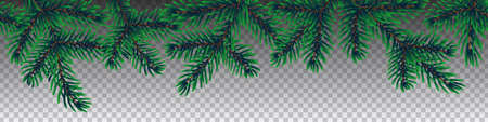 Winter coniferous tree branches on transparent background seamless vector. Illustration