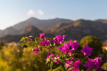 oludeniz: Mountains in Oludeniz, Turkey