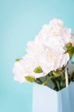 Amazing white carnation flowers in a gift bag on the aquamarine background, copy space