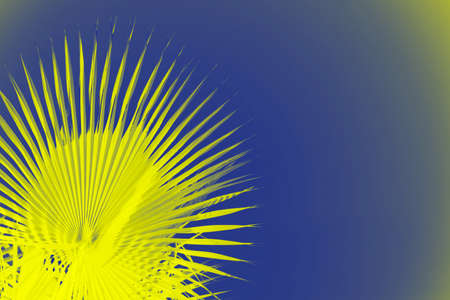 Vivid yellow palm leaves on deep blue background. Copy space