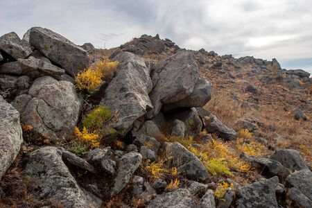 Many large rocky stones on a hillside. Rare bushes of grass between the stones. Clouds in the sky. Reklamní fotografie