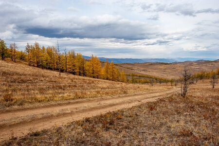 Country road in the picturesque steppes with hills. Yellow autumn trees and brown grass. Clouds in the sky. Horizontal. Reklamní fotografie