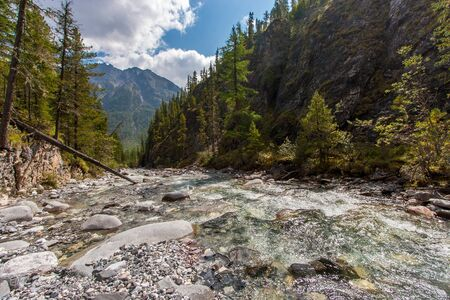 Mountain river in a gorge with trees and rocks along the edges. Tree trunk fallen into the river. Sunny. A mountain with clouds in the distance. Horizontal.