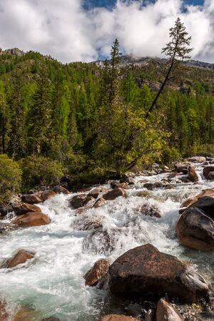 Stormy mountain river with stones in the mountains. Green forest around. Far away are mountains and low white clouds. Vertical.