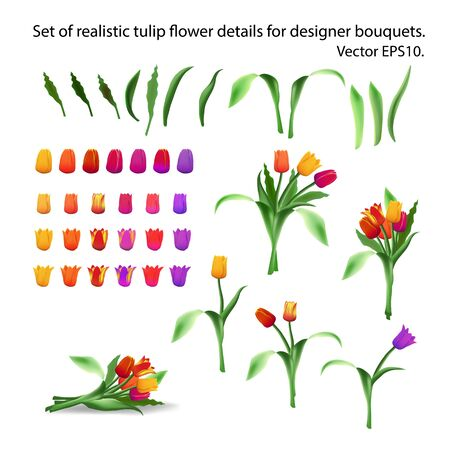 Set of realistic tulip flower details for arranging bouquets. Constructor. Designer of bouquets of tulips. Multi-colored buds, petals and stems. Long leaves. Isolated vector EPS10.