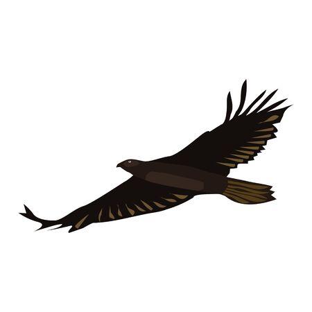 Fliegender Adler getrennt auf Weiß. Brauner großer Vogel mit sich ausbreitenden Flügeln. Vektor-EPS10.