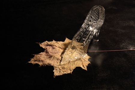 cinderella shoes: Nice glass slipper standing on yellow autumn leaf Stock Photo