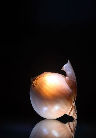 reverberation: Close-up of an onion with reverberation lying on dark glassy background