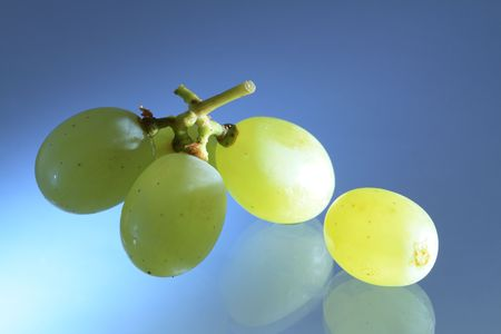 Small bunch of grapes with reverberation on blue background photo