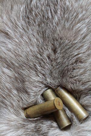 silver fox: Three cartridges lying on background with nice gray silver fox fur
