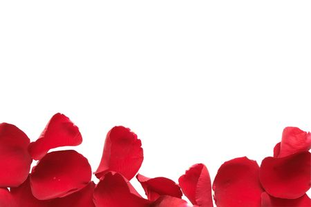 love explode: Border made from red rose petals isolated on white background