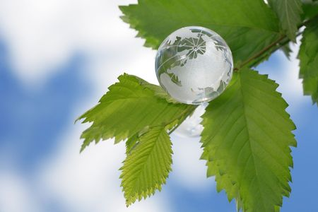 reverberation: Glass globe lying on green leaves on mirror background with sky reverberation
