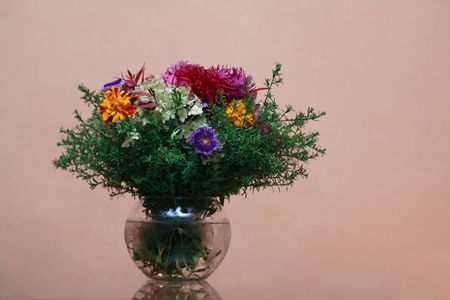 multy: Glass vase with fresh flower bouquet on cool violet background