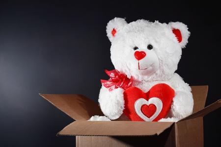 White taddy bear handing red heart inside cardboard box on dark background Stock Photo