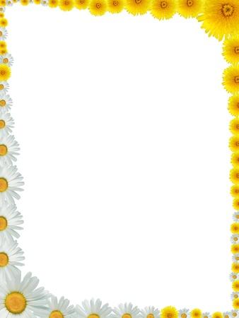多くの黄色のタンポポと牛の目のデイジーの花から作られた素晴らしいフレーム 写真素材