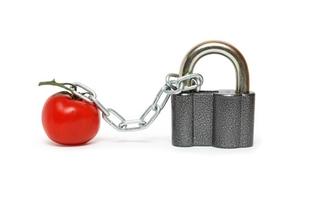 under arrest: Fresh tomato attached to padlock with metal chain. Stock Photo