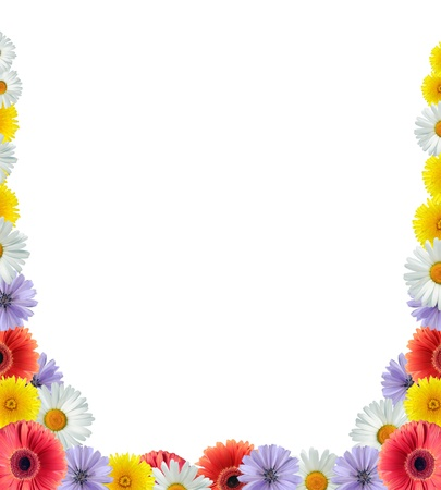 Beautiful border made from lot of color flower heads Standard-Bild