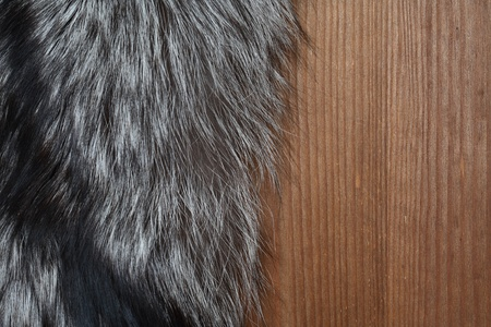 silver fox: Closeup of natural silver fox fur on wooden surface